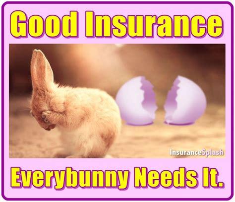 Pet Insurance Meme - 25 best ideas about insurance humor on pinterest pharmacy funny pharmacy humor and nursing