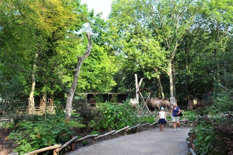 Garten Und Landschaftsbau Ausbildung Gelsenkirchen by Gelsenkirchen Zoo Asien 171 Benning Gmbh Co Kg M 252 Nster