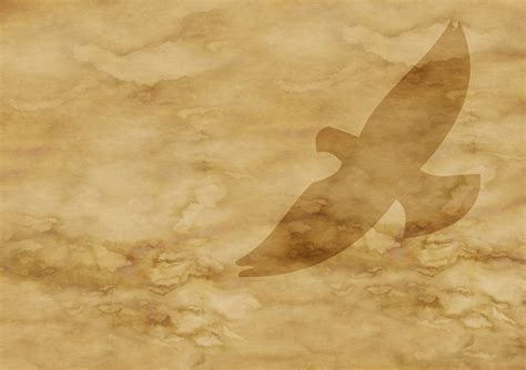Free illustration: Paper, Parchment, Dove, Flight, Fly   Free Image on Pixabay   787648
