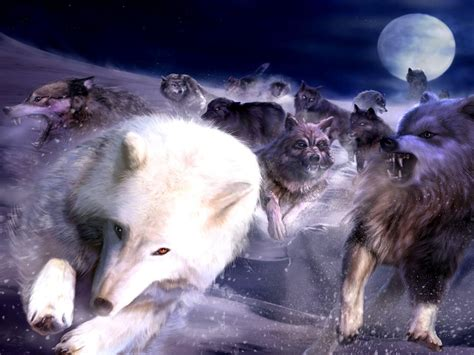 3d Wallpapers Wolf by Wolf Pack Wallpapers Wallpaper Cave