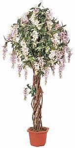 Arbuste Fleuri En Pot : arbuste en pot ~ Premium-room.com Idées de Décoration