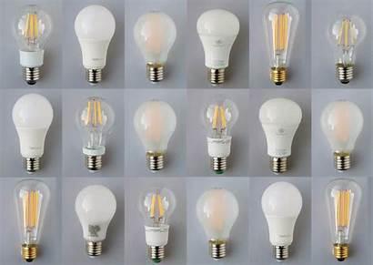 Led Bulbs Lux Bulb Lighting Lights Much