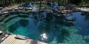 A review of five different natural swimming pool (NSP