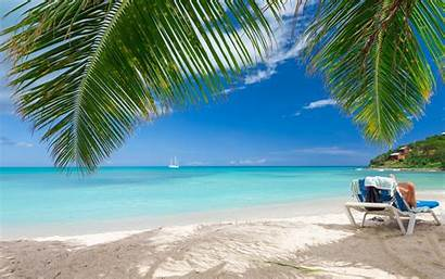 Palm Tropical Caribbean Trees Sea Sand Vacations