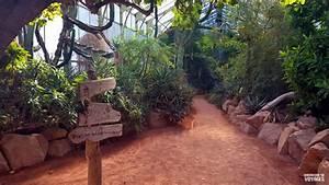 Jardin Botanique De Lyon : lyon pour un long week end top 9 des activit s faire ~ Farleysfitness.com Idées de Décoration