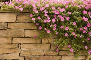 Natursteinmauern Im Garten : natursteinmauer im garten bauanleitung in 4 schritten ~ Markanthonyermac.com Haus und Dekorationen