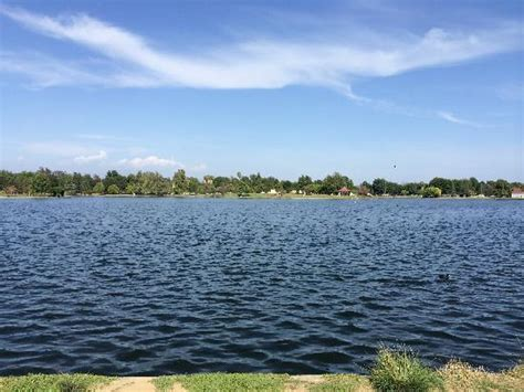 Paddle Boats Lake Balboa by The Other Los Angeles Travel Guide On Tripadvisor