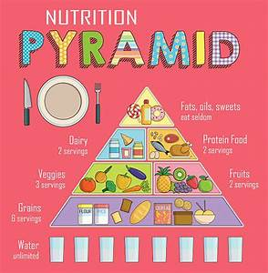 Food Pyramid Illustrations  Royalty