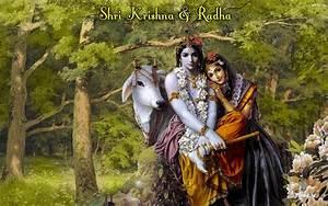 Lord krishna hd wallpapers free download in mariduniya.net