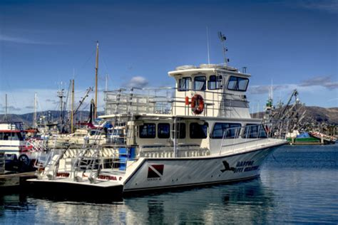 Westerly Dive Boat by Welcome To The Raptor Dive Charters Website Located In