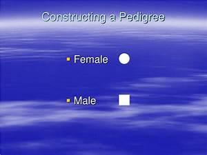 Ppt Pedigree Charts Powerpoint Presentation Id 340435