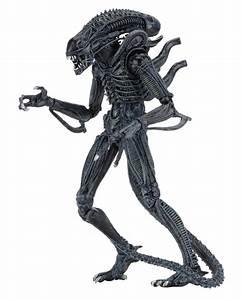 Aliens – 7″ Scale Action Figures – Ultimate Alien Warrior