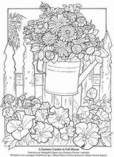 Coloring Larkspur Carmin 51kb 760px sketch template