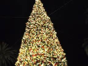 greek fisherman city grill meloncino giant christmas trees