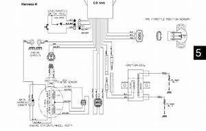 Yamaha Rhino Ignition Wiring Diagram Color Wires