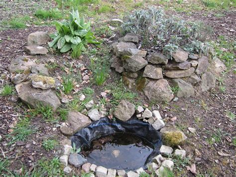 Wasserstelle Im Garten by Mein Naturgarten Der Kleingarten Als Biotop