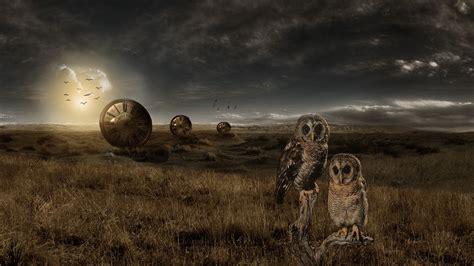 adobe photoshop landscape owl  photo manipulation
