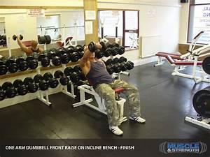 One Arm Dumbbell Front Raise On Incline Bench  Video