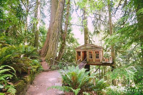 A Village Of Treehouses Perfect For Glamping