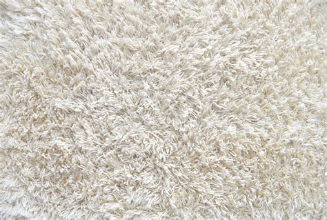 inspirational home depot carpet wholehearted ii