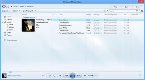 windows media player     neurogadget