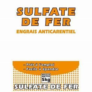 Anti Mousse Pelouse Sans Sulfate De Fer : sulfate de fer fluidis 5kg castorama ~ Dailycaller-alerts.com Idées de Décoration