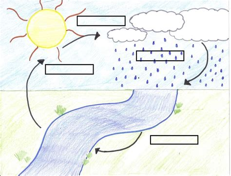 blank water cycle diagram worksheet teacher water