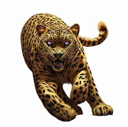 Spirit Animals Animal Spiritanimals Scholastic Leopard Serie