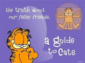 Garfield U0026 39 S Guide To Cats Screensaver For Windows