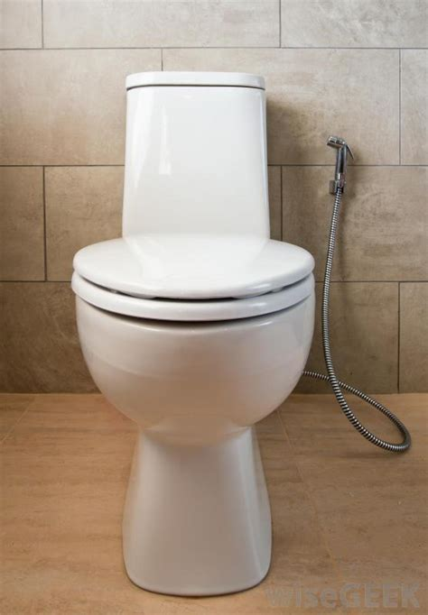 what is bidet what is a bidet shower with pictures