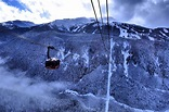 Peak 2 Peak Gondola ride in Whistler - Nomadic Boys