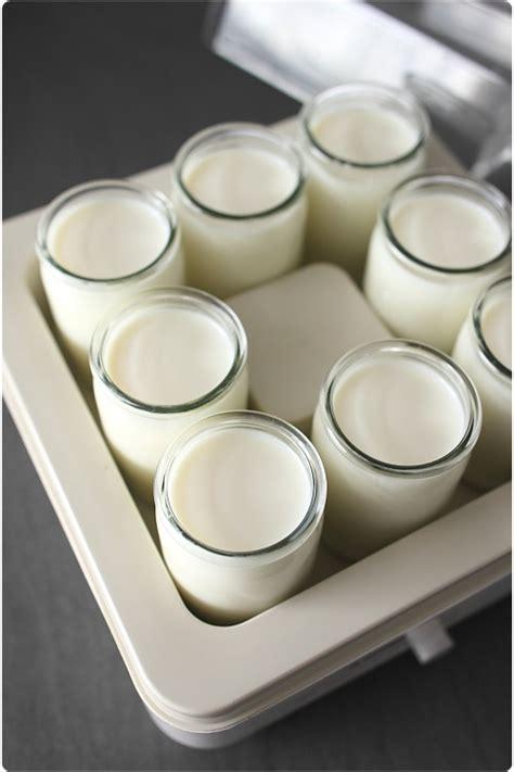 pot de yaourt pour yaourtiere tout sur les yaourts maison et le choix d une yaourti 232 re chefnini