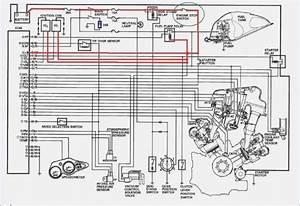 2000 Sv650 Wiring Diagram  U2013 Moesappaloosas Com