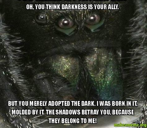 The Darkness Meme - oh you think darkness is your ally but you merely adopted the dark i was born in it molded