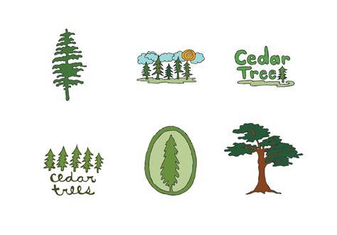 cedar tree vector series   vector art