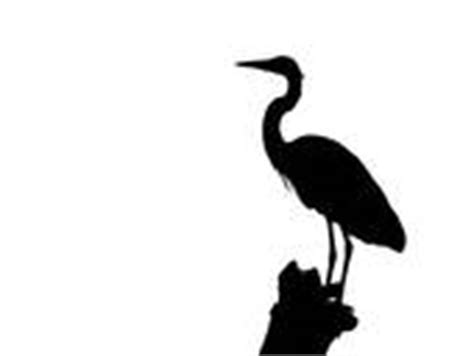Airboat Silhouette by Airboat Rudder Related Keywords Airboat Rudder