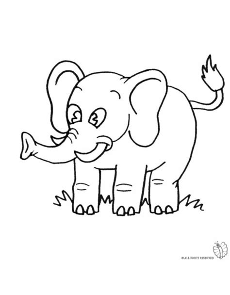 disegno  elefante da colorare  bambini