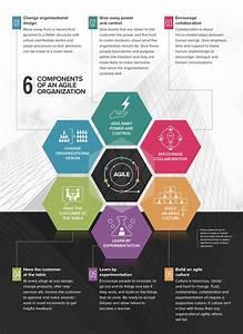 Six ways to build an agile organization