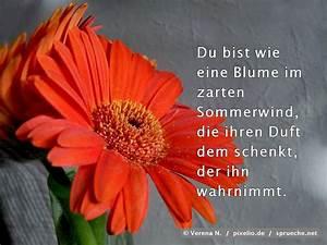 Liebe Ist Wie Eine Blume : sommerwind spr che bilder ~ Whattoseeinmadrid.com Haus und Dekorationen