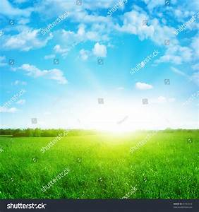 Sunshine In Blue Sky And Green Field. Stock Photo 81367210 ...