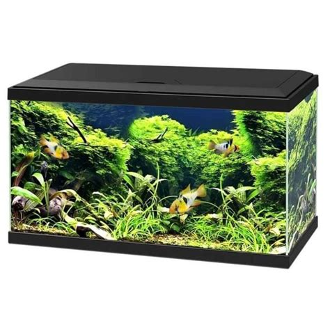 aquarium 60 litres pas cher aquarium 60 litre achat vente aquarium 60 litre pas cher cdiscount