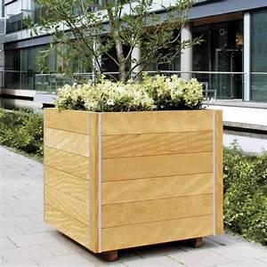 Bac En Bois Pour Plantes : bacs bois pour plantes exterieur ~ Dailycaller-alerts.com Idées de Décoration