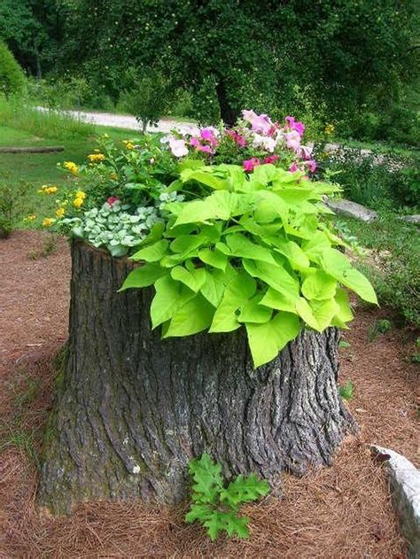 how to make your own tree stump planter diy projects for everyone
