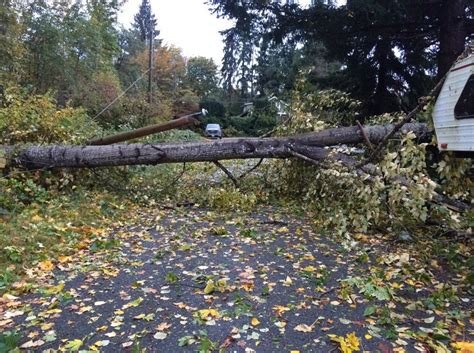 autumn wind storm  southern bc cuts power