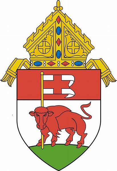 Buffalo Diocese Catholic Svg Roman Bishop Wikipedia