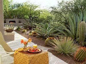 Southwest patio ideas, southwestern backyard ideas south