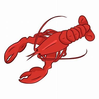 Lobster Claw Illustration Tail Antenna Transparent Svg
