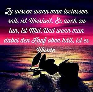 Wann Soll Man Vertikutieren : zu wissen wann man loslassen soll richie pinterest einstein motivation and wisdom ~ Orissabook.com Haus und Dekorationen