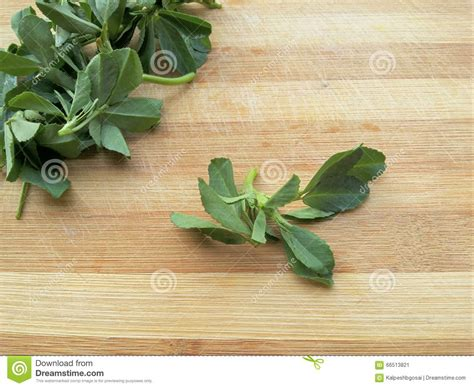 Fenugreek Leaves On Wooden Background Royalty Free Stock