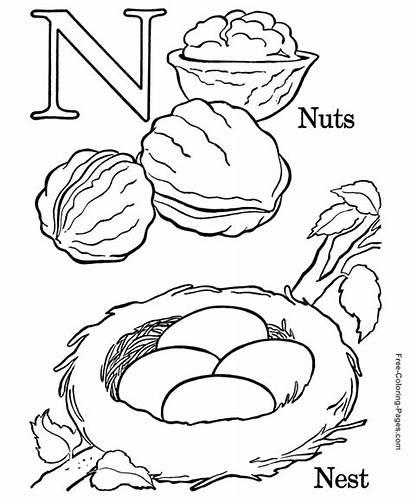 Coloring Alphabet Nuts Printable Letter Preschool Sheets